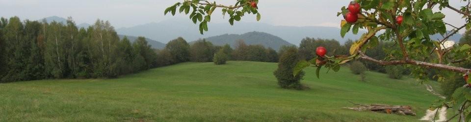 prati di planino, autunno 2012